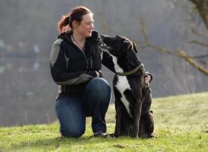 Doggyschool Trainer
